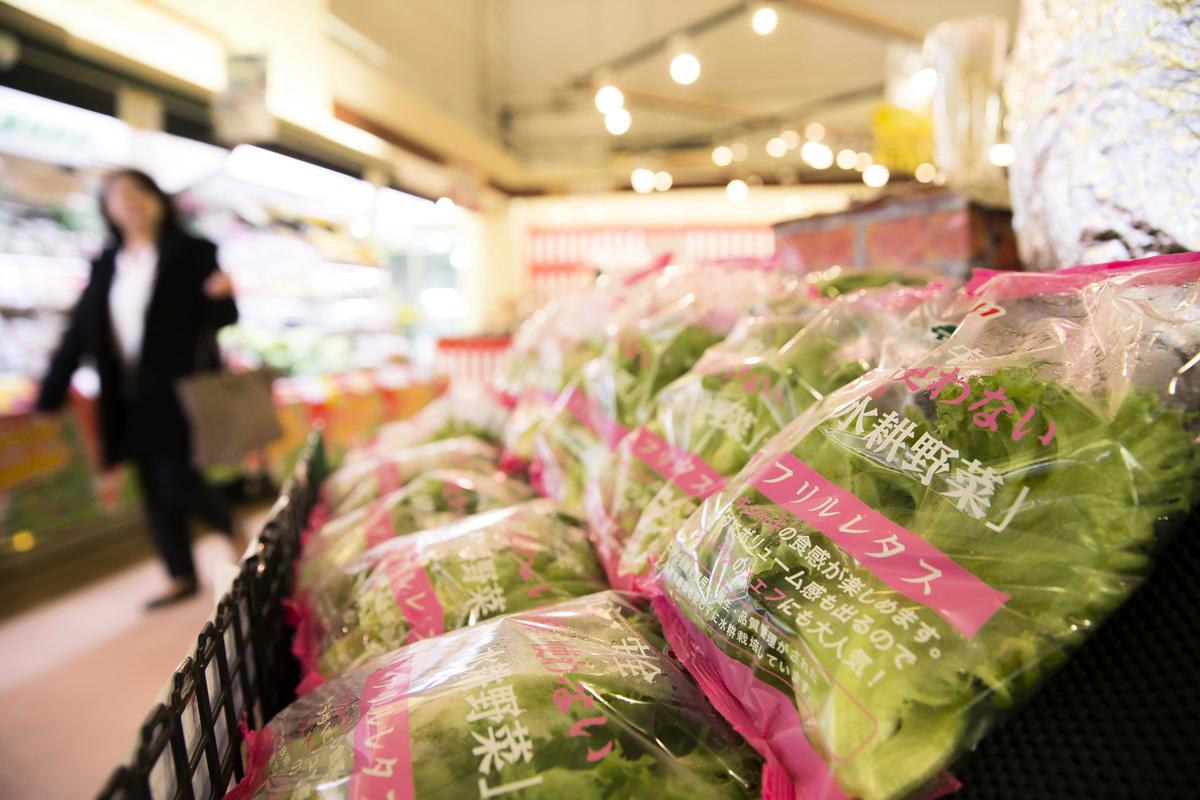 美國從2021年9月22日起取消對日本食品的進口限制。(Tomohiro Ohsumi/Getty Images)