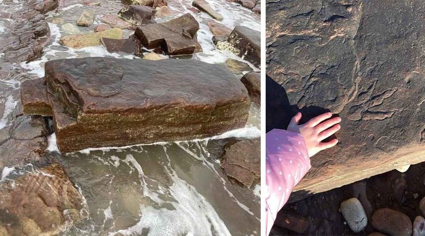 4歲的莉莉在一塊跟她肩膀差不多高的岩石上發現了這個恐龍腳印。(母親薩莉提供)