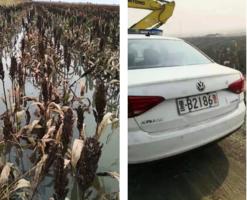 九萬畝良田被淹 黑龍江富裕縣村民變赤貧