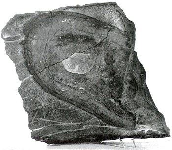 內華達鞋印化石(明慧網)