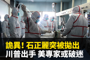 凌曉輝:武漢P4實驗室對蝙蝠身上病毒的改造