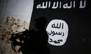 伊拉克總理宣佈ISIS二號頭目被擊斃