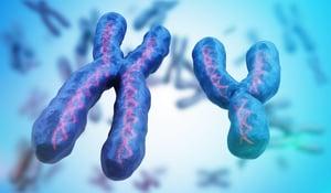男性比女性壽命短 研究揭示與Y染色體有關