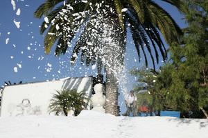 兩風暴來襲 給半個美國帶來大雪外加雨和冰