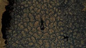 央企排黑液 騰格里沙漠現12萬平米污染帶