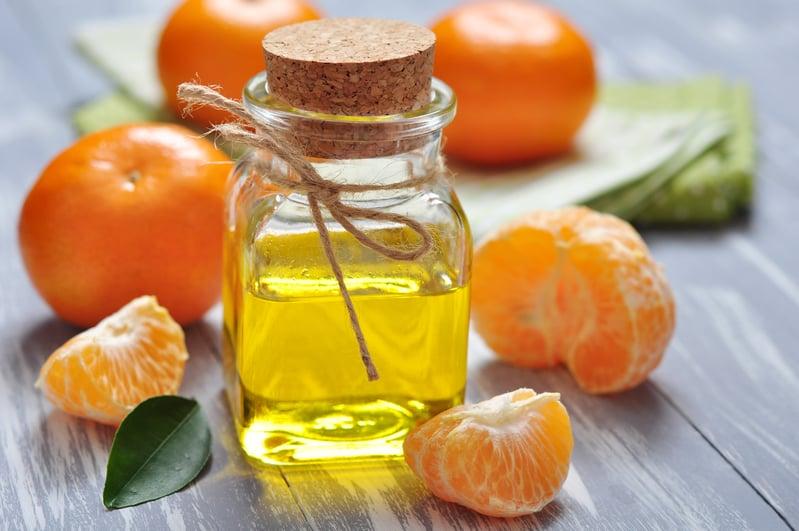 【文史】吃橘懷橘: 名將名相橘頌美德故事