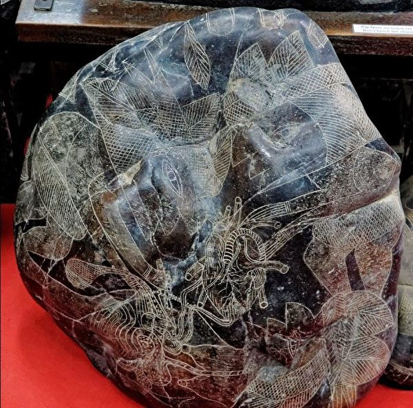 表現心臟移植的史前刻石。(明慧網)