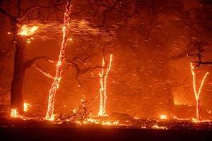 北加州又起野火 摧毀小鎮 數萬人強制撤離