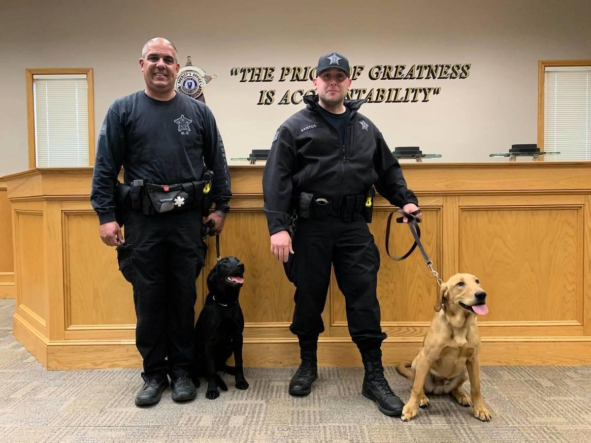 通過訓練的警犬杜克(Duke)和亨塔(Huntah)可以聞出中共病毒。(布里斯托縣治安官辦公室新聞稿)