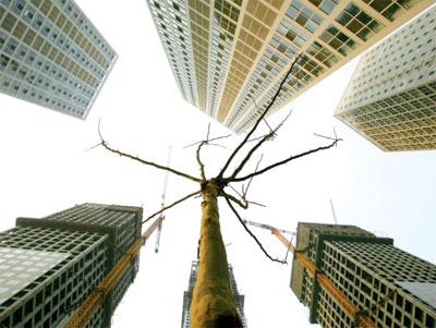 大陸學者揭大陸樓市空置率遠遠高於美國等發達國家,處於危險區間。(Getty Images)