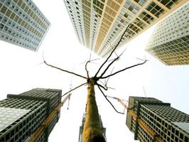 學者:大陸樓市空置率處於危險區間