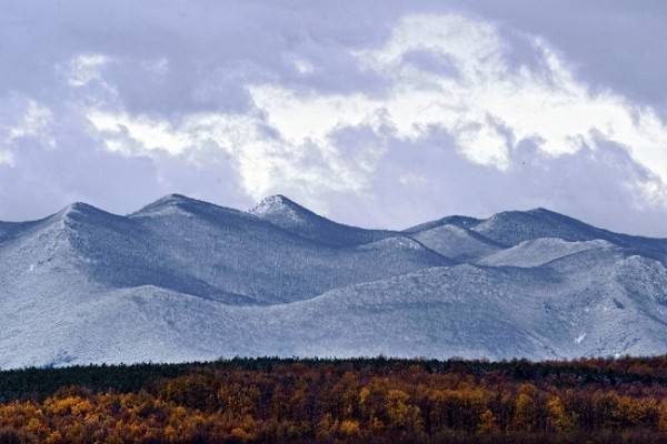 高風催過雲,小雪閒中過。(AFP PHOTO / DIMITAR DILKOFF)