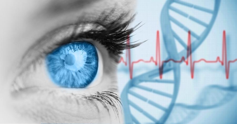 研究:決定眼睛顏色的基因不簡單