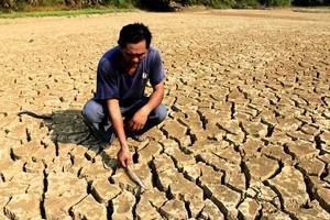 連續乾旱3個月 江西省至少440萬人受災