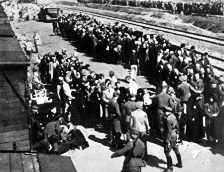 照片中囚犯們在位於波蘭的奧斯威辛-比克瑙集中營被分類,拍攝時間是1944年左右。(Shutterstock)