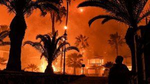 希臘雅典大火燒燬逾半森林 恐釀生態浩劫