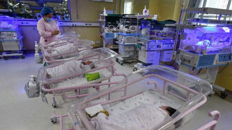 南非婦女生下10胞胎 打破健力士世界紀錄