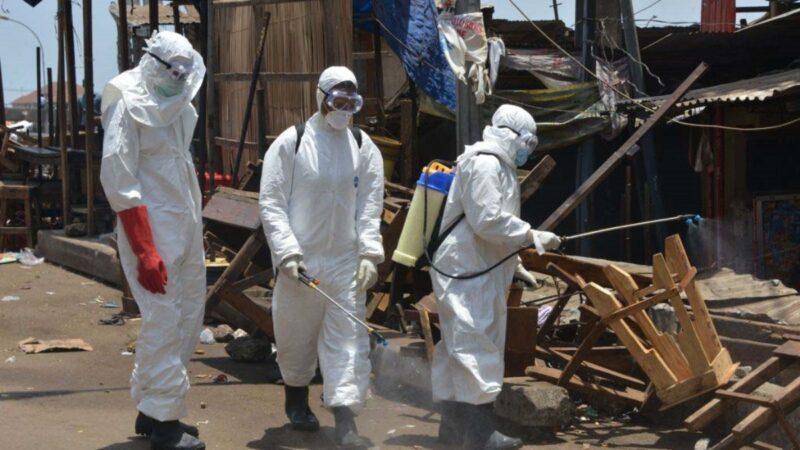 西非首現馬爾堡病毒死亡病例 WHO:致死率達88%