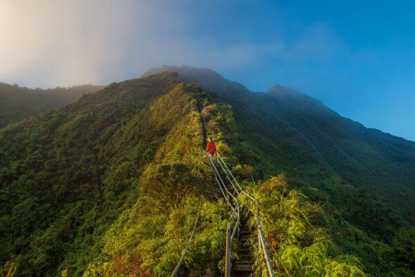 海庫階梯由於步道陡峭,也被探險者封為全球最恐怖的階梯之一。(Kalen Emsley on Unsplash)