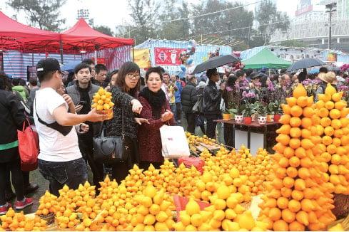 羊年新年臨近,香港維園年宵花市人頭湧湧。